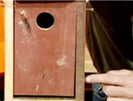 A Project for Young Woodworkers -- Building a Birdhouse
